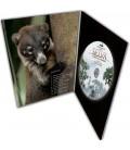 DigiPion DVD 2 volets carton 350 grammes